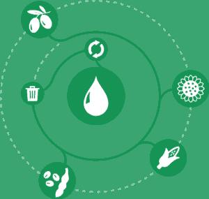 Wijzonol BIOseries-circulair-groen